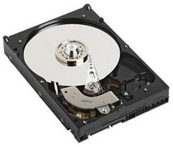 DELL 400-AHJG 1000GB SATA interne harde schijf