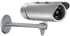 D-Link DCS-7110 Binnen & buiten Dome Zilver