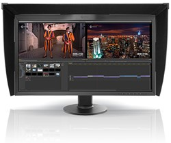 "Eizo CG318-4K 31.1"" 4K Ultra HD IPS Zwart computer monitor LED display"